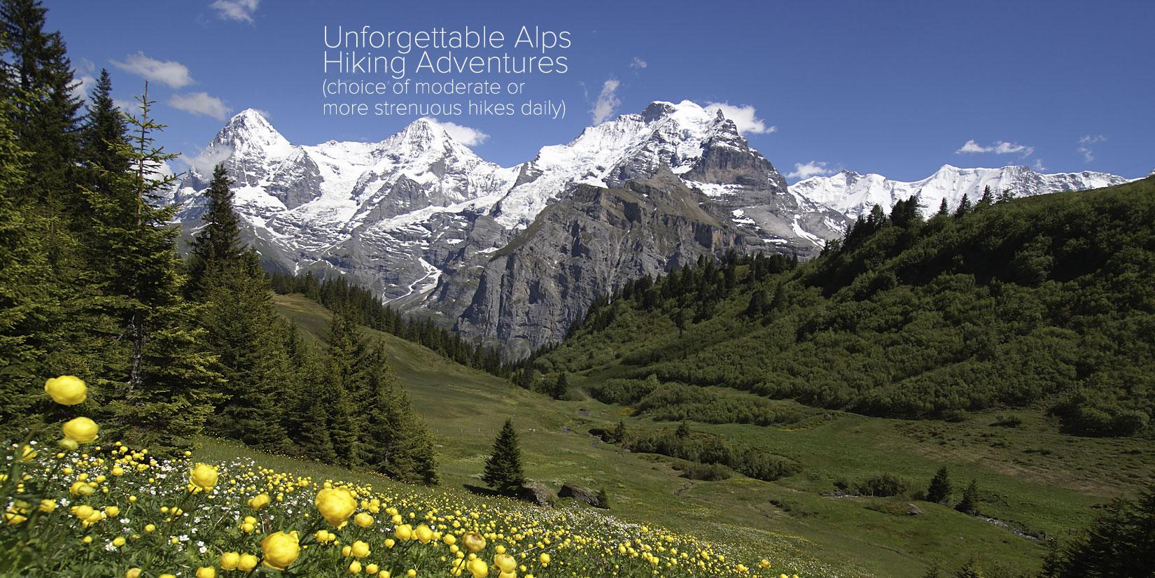 Tours From Bern Switzerland